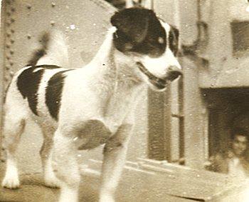 (Whiskey_mascot_1945 image)