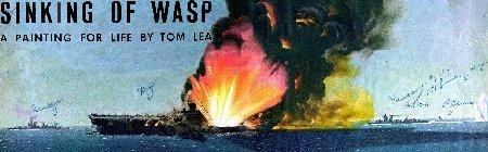 Image wasppix